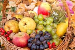 Sund mat, organisk höstfrukt i vide- korg royaltyfri fotografi