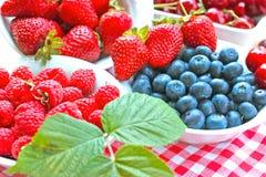 Sund mat - starka antioxidants Arkivbild