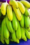 Sund matgrupp av tropisk frukt för banan som riping på banantre Arkivfoton