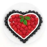 sund näring Arkivbilder