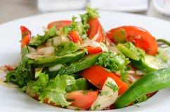 Sund naturlig mat, ny sallad med grönsaker i platta arkivbilder