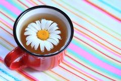 Sund och kryddig drink Royaltyfri Foto