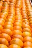 Sund organisk apelsinbakgrund, Royaltyfria Bilder