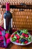 Sund picknick med rött vin och en bär- och muttersallad Fotografering för Bildbyråer
