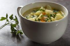 Sund soppa i den vita bunken med moroten, potatisar och persilja Arkivfoton