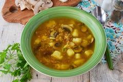 Sund soppa med bovete, potatisen, champinjoner, morötter och olivgrön oi för lökintelligens i en grön bunke på en träbakgrund royaltyfria bilder