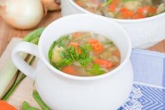 Sund soppa som göras av hemmet - fullvuxna trädgårds- grönsaker Royaltyfri Foto