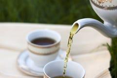 sund tea Royaltyfria Bilder