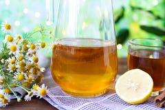 Sund tekombucha med citronen och kanel Recept för hemlagade Kombucha arkivfoton