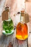 Sund tinktur som naturlig medicin Fotografering för Bildbyråer