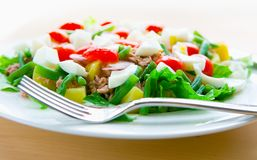 sund tonfisk för nicoiseplattasallad Fotografering för Bildbyråer