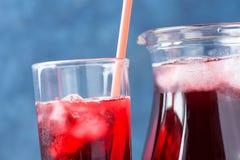 Sund uppfriskande drink från ishibiskuste och röda bär och fruktfruktsaft i kanna och högväxt exponeringsglas med sugrör vitamine Arkivbild