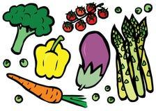 Sund uppsättning för nya grönsaker Fotografering för Bildbyråer