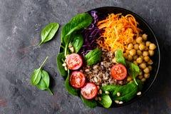 Sund vegetarisk maträtt med bovete- och grönsaksallad av kikärten, grönkål, morot, nya tomater, spenatsidor och att sörja muttrar royaltyfri fotografi