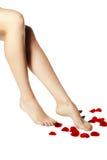 Sunda ben för kvinna` s vita isolerade ben härliga isolerade ben för bakgrund över den vita kvinnan Royaltyfria Bilder