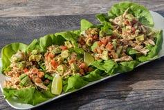 Sunda fega taco på smörbladgrönsallat royaltyfri bild