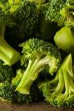Sunda gröna organiska rå broccoliFlorets Royaltyfri Fotografi