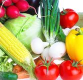 sunda grönsaker för mat Arkivbild