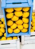 Sunda organiska citroner i blåa och vita askar Royaltyfri Fotografi