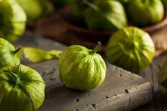 Sunda organiska gröna Tomatillos arkivbild