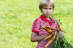 Sunda organiska grönsaker för ungar Pojke som rymmer en morot i hans händer utomhus- Royaltyfri Bild