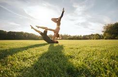 Sunda par som gör acroyoga på gräs Royaltyfria Bilder