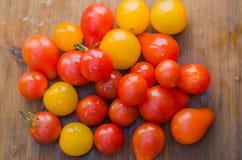 Sunda röda och gula organiska körsbärsröda tomater fotografering för bildbyråer