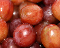 Sunda saftiga röda druvor Royaltyfri Foto