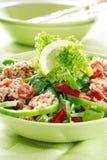 sunda salladtunny för mat Royaltyfri Bild