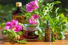 Sunda te- och tinkturflaskor av dogrosebär Växt- medi Arkivbild