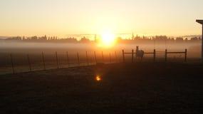 Sundance. In the morning sunrise Stock Photo