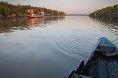 Sundarbans delta Fotografia Stock