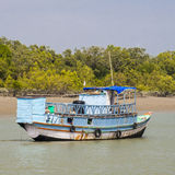 The Sundarbans Stock Image