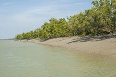 The Sundarbans Stock Images