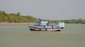 Sundarbansen Arkivfoton