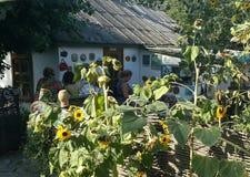Cossak village- Starocherkasskaya, Rostov Region, Russia royalty free stock image