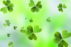 Emplate Design banner on St. Patrick`s Day royalty free stock photo