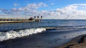 Sunday walk by the sea. Gdynia, Poland - January 07, 2018: Sunday walk by the sea, people feed birds Royalty Free Stock Photo