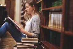 Sundent στη βιβλιοθήκη στοκ φωτογραφία