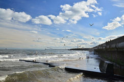 Sunderland seascape. A seascape with gentle waves and flying seagulls Stock Photography