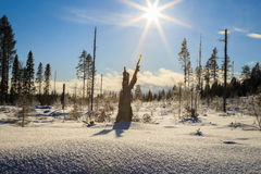 Sundial. Mountain winter landscape with sunlight Stock Image