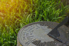 Sundial in spring flowers natural concept with wet morning grass Stock Photo