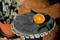 Sundial tangerine Stock Photos