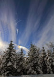 Sundog in nordic winter sky Royalty Free Stock Photo