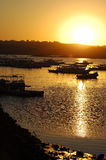 Sundown. On the river Nile Royalty Free Stock Photography