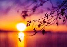 sundown Fotografia de Stock