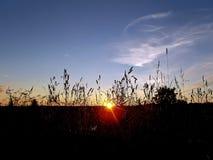 sundown Foto de Stock Royalty Free
