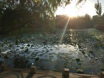 sundown Стоковые Изображения
