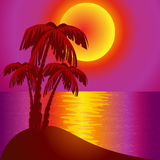 Sundown on background epidemic deathes and palms Stock Photography