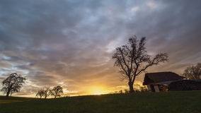 Sundown on a clearing in Germany stock video footage